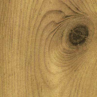 Pine-swatch
