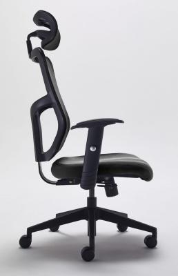 Kempes Ergonomic Mesh Back Chair Side View