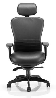 Shadow High Back Leather Task Chair Front View