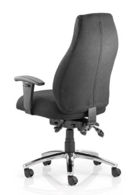 Torso Ergonomic Chair Rear View