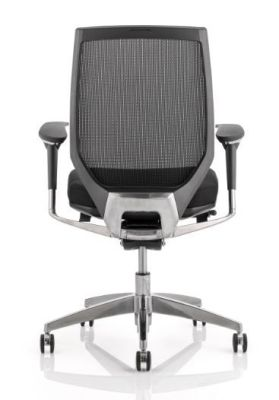 Gordias Mesh Task Chair Rear View