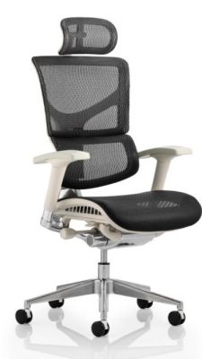 Ergo D Task Chair With Headrest And A Grey Frame