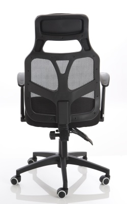 Tambo Chair Rear View